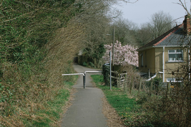 Bethan Wiltshire
