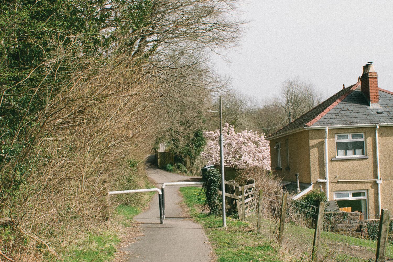 Bethan-Wiltshire-13