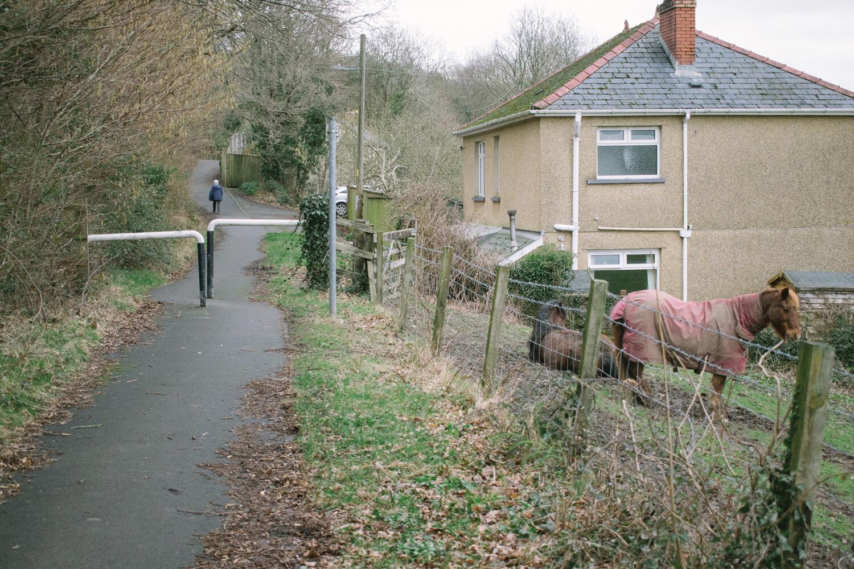 Bethan-Wiltshire-6